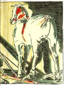 public domain image of the Skin Horse from Velveteen Rabbit