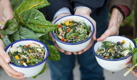 web_salad_garden4